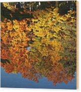 Fall Reflectionsin Michigan Wood Print