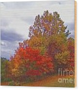 Fall Retreat Wood Print