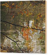 Fall River Branches Wood Print
