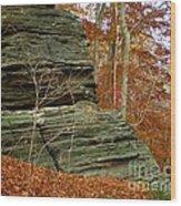 Fall Rock Wood Print