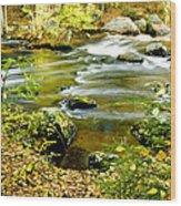 Fall Squared Wood Print