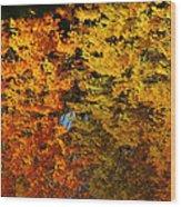 Fall Textures In Water Wood Print by LeeAnn McLaneGoetz McLaneGoetzStudioLLCcom