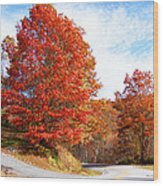 Fall Tree By The Road Wood Print