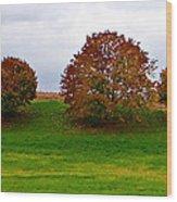 Fall Tree Line Wood Print