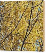 Fall Trees Art Prints Yellow Autumn Leaves Wood Print