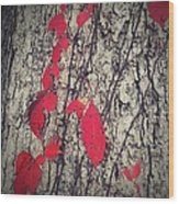 Fall Vines Wood Print