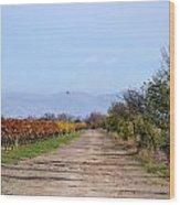 Fall Vineyard Wood Print