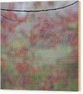 Fall Web Wood Print
