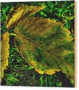 Fallen Elm Leaves Wood Print