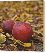 Fallen Fruit Wood Print