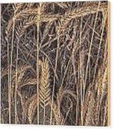 Fallen Grains Wood Print