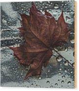 Fallen Leaf Wood Print by Vladimir Kholostykh