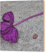 Fallen Purple Leaf Wood Print by Robert Ullmann