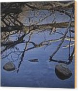 Fallen Tree Trunk With Reflections On The Muskegon Rive Wood Print
