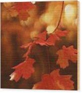 Falling Into Autumn Wood Print