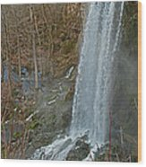 Falling Springs Wood Print