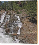 Falling Water Glen Alpine Falls Wood Print