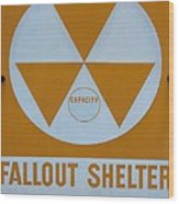 Fallout Shelter Wood Print