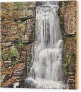 Falls At Bushkill Wood Print