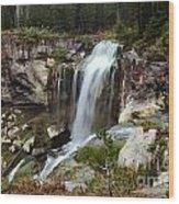 Falls At Newberry Wood Print