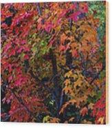 Falls Fiery Rainbow Wood Print