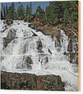 Falls Glen Alpine Falls Tahoe Wood Print