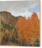 Fall's Glory Wood Print