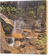Falls In The Valley Wood Print