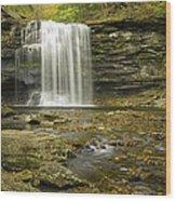 Falls Panorama Wood Print