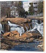 Falls Park Sc Wood Print