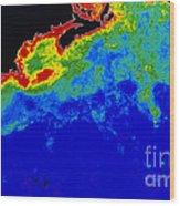 False Col Satellite Image Wood Print by Dr. Gene Feldman, NASA Goddard Space Flight Center