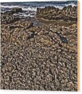 Famara Wood Print
