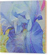 Fanciful Flowers - Iris Wood Print