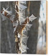 Fancy Fractal Frost Crystals Wood Print