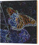 Fantasy Butterfly Wood Print