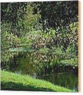 Fantasy In Green Wood Print