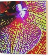 Fantasy Orchid 1 Wood Print
