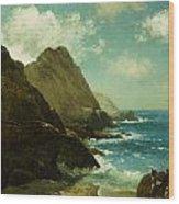 Farallon Islands Wood Print