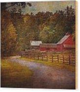 Farm - Barn - Rural Journeys  Wood Print by Mike Savad