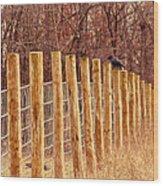 Farm Fence And Birds Wood Print
