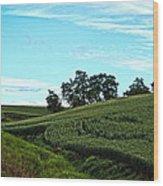 Farm Fields Wood Print