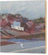 Farm House Cut Off Of Route 5 Wood Print by Betty Pieper