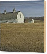 Farm Scene With White Barn Wood Print
