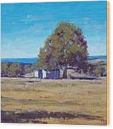 Farm Shed Wood Print by Graham Gercken