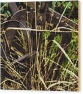 Farmer Brown's Wood Print