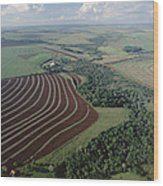 Farming Region With Forest Remnants Wood Print