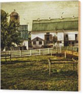 Farmland In Intercourse - Pennsylvania Wood Print