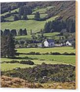 Farmland Near Kilgarvan County Kerry Wood Print