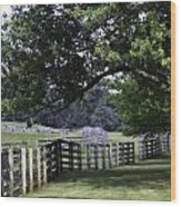 Farmland Shade Appomattox Virginia Wood Print