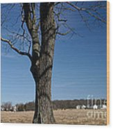 Farmland Versus Development Wood Print by Karen Lee Ensley
